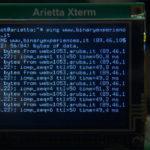 L'xterm di arietta g25 mostra l'esito del comando ping verso binaryexperiences.it